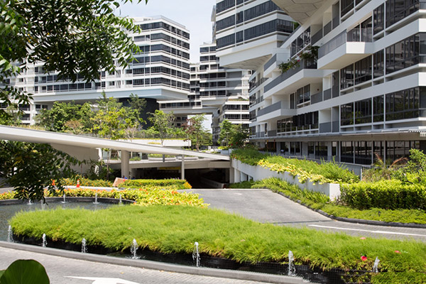 The Interlace 5