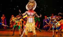 Thelionking3 A5513d335f09a095540d2b6574760557